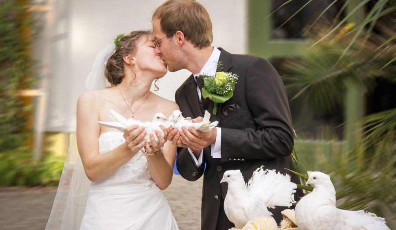 perfecte trouwdag