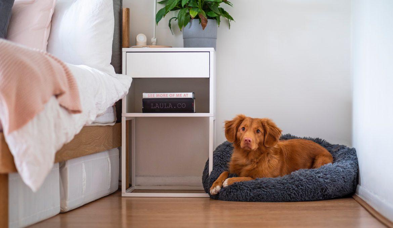 Welke laminaatvloer kies je voor de woonruimte?